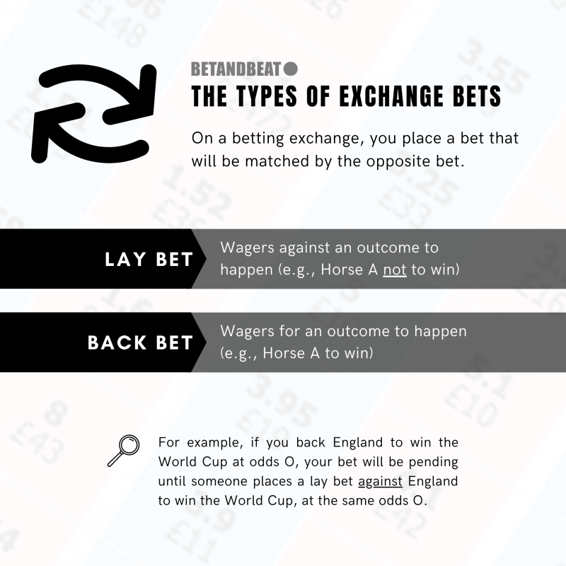different bets on a betting exchange platform: back and lay bets.